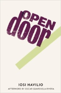 Iosi Havilio, Open Door tr. Beth Fowler (And Other Stories 2011 UK/2013)